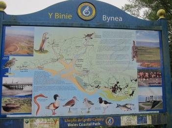 Info on Llanelli wetlands