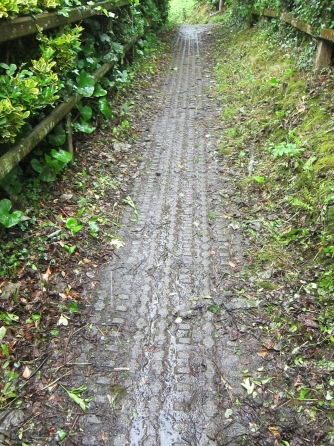 Path above Tenby